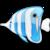 angeln-mit-thomas