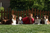 beagle-aussie