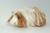 bremer-zuckerschnuten