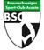 bsc-u13