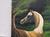 crazy-horse-art