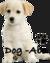 dog-abo