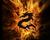 dragons-island