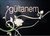 gul-tanem-fm