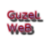 guzel-web