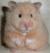 hamsterhuette