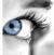 htmlkodlar-tr