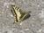 kibe-cevialpin