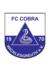 kultverein-cobra