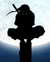 kurayami2-wiki
