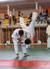psyco-saiyan-judo