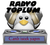 radyotoplum