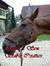 ryans-son-stables