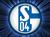 schalke04-fc