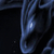 shadow-dragonwings