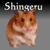 shingeru