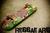 skate-y-reggae