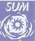 sumvolleyball