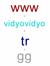 vidyovidyo
